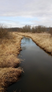Headwaters of the Shiawassee river Mid-MI