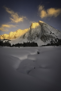 Heavenly fresh snow with jaw-dropping mountains in Kananaskis Country in Alberta Canada