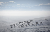 Herders ride horses on snow-covered field in Zhaosu County Yili Xinjiang Uighur Autonomous Region China