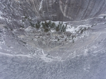 Heres a badass clump of trees hanging onto the Chief during a snowstorm This granite dome is kinda like the British Colombia version of El Capitain except a little smaller Squamish BC Canada
