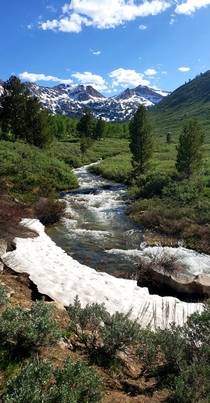 Hidden Gem Lamoille Canyon Ruby Mountains Nevada USA