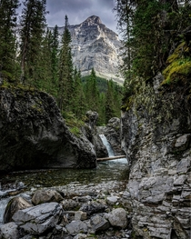 Hidden Gem near Ribbon Lake Kananaskis Alberta