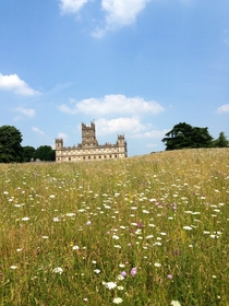 Highclere Castle in Newbury England  x-post from rtravel