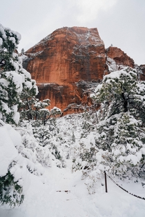 Hike at Zion National Park -