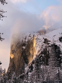 Hiked about a mile in snow with my dog and fianc stood in  feet snow for more than an hour to witness the majestic Yosemite Firefall Totally worth it