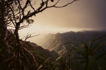 Hiked to the top of the Haiku Stairs in Honolulu and it looked liked some place that should have dragons flying about
