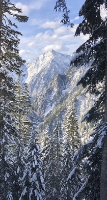 Hiking after a fresh November snowfall in the North Cascades Western Washington