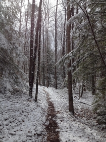 Hiking along a snowy path Hidden Passage Trail Pickett State Park Tennessee