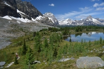 Hiking around the Lake o Hara area of Yoho National Park