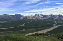 Hiking the backcountry near Polychrome Pass in Denali National Park