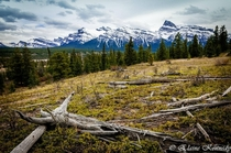 Hiking through the Kootenay Plains in Albertas Rocky Mountains