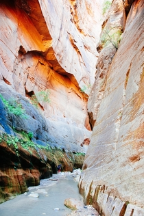 Hiking through The Narrows at Zion National Park Utah