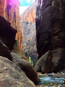 Hiking through The Narrows in Zion National Park Utah