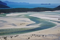 Hill Inlet Whitsunday Island Australia