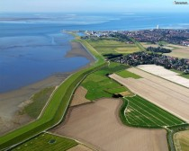Holstein Germany Dike by Bsum next to the North Sea or more accurately the Wadden Sea The little white dots are sheep compressing and mowing the grass Height is m over mean sea level