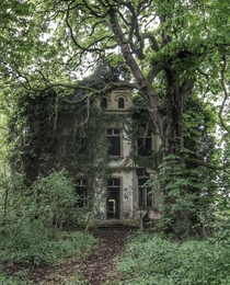 Home in Germany being slowly swallowed by nature