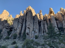 Hoodoos Catching the Morning Sun - Chiricahua National Monument Arizona