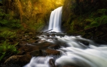 Hopetoun Falls Australia by Lincoln Harrison