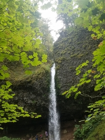 Horsetail Falls OR - Pre-Eagle Creek Fire