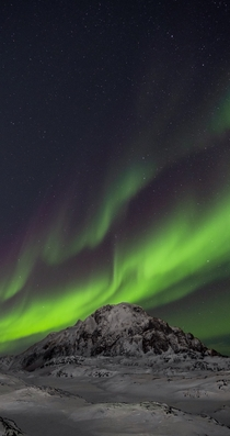 How auora borealis really looks Greenland