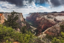 How could you not fall in love with this view atop the Observation Point Trail Zion National Park