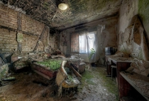 How the greenery adds to the dilapidated look of this room