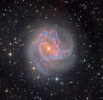 hr exposure of the Southern Pinwheel Galaxy using a inch telescope photographed from Chile