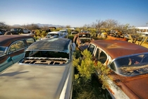 Huachuca City AZ Where Classic Cars go to Die