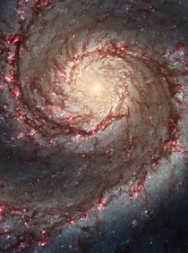 Hubble ACS visible image of M - the Whirlpool Galaxy
