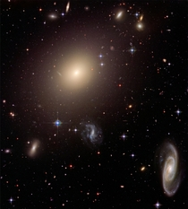 Hubble illuminates cluster of diverse galaxies