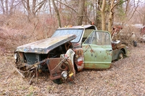 Huge car collection left to rot near Chicago