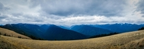 Hurricane Ridge in Olympic National Park Washington