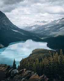 I always saw Peyto Lake in Banff as a fox but today I see Baby Yoda Alberta Canada  OC IG arvindj