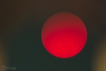 I attempted to shoot the Sun in H-Alpha through the eyepiece on one of our solar telescopes
