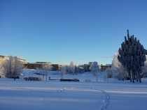 I attend a very beautiful but cold university Ume Sweden