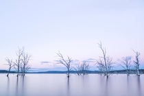 I bought a camera and have hit the road around Tasmania teaching myself photography on the way This is Arthurs Lake
