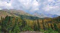 I broke off from my group to hike to the top of a hill just outside Anchorage AK and it was worth it