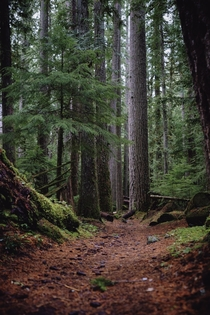 I cant get enough of the hikes in Oregons Jefferson Wilderness