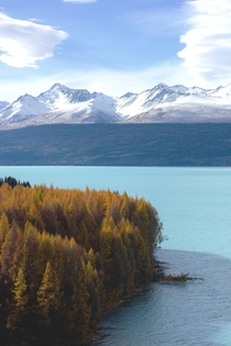 I cant tell if I took a picture of a painting or beautiful Lake Tekapo New Zealand  relativebrand