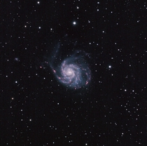 I captured The Pinwheel Galaxy M