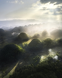 I caught a picture of the so called Chocolate Hills a foggy morning in the Philippines