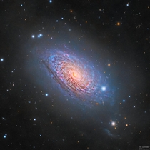 I collected light for  hours with an amateur telescope to build this detailed portrait of the Sunflower Galaxy Its hazy outer halo contains billions of stars that were strewn across space as it absorbed a companion galaxy