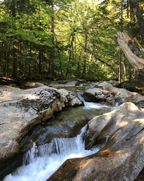 I could stay here all summer long Franconia Notch New Hampshire
