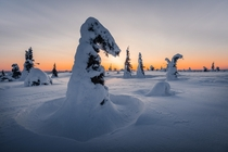 I definitely felt like an ice cream at this point It was -C with a beautiful soft polar sunrise Finnish Lapland  OC IG arvindj