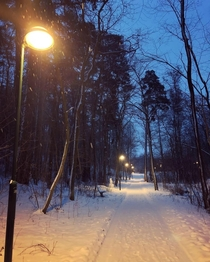 I enjoyed hiking around Stockholm listening to the snowfall