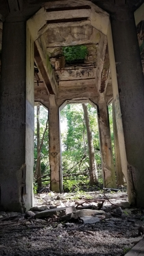 I enjoyed the greenery in the ceiling opening of this unknown abandon structure