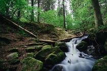 I found another stream this time it wasnt by accident Taken in Stockholms National Park Tyresta By