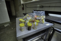 I Found Human Biological Specimens in a Refrigerator in the Morgue of the Abandoned St Catharnies General Hospital