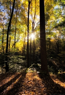 I FREAKING LOVE FALL - Cuyahoga Valley National Park Ohio