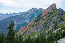 I got this shot of Red Mountain while hiking on the Pacific Crest Trail Section J in Washington